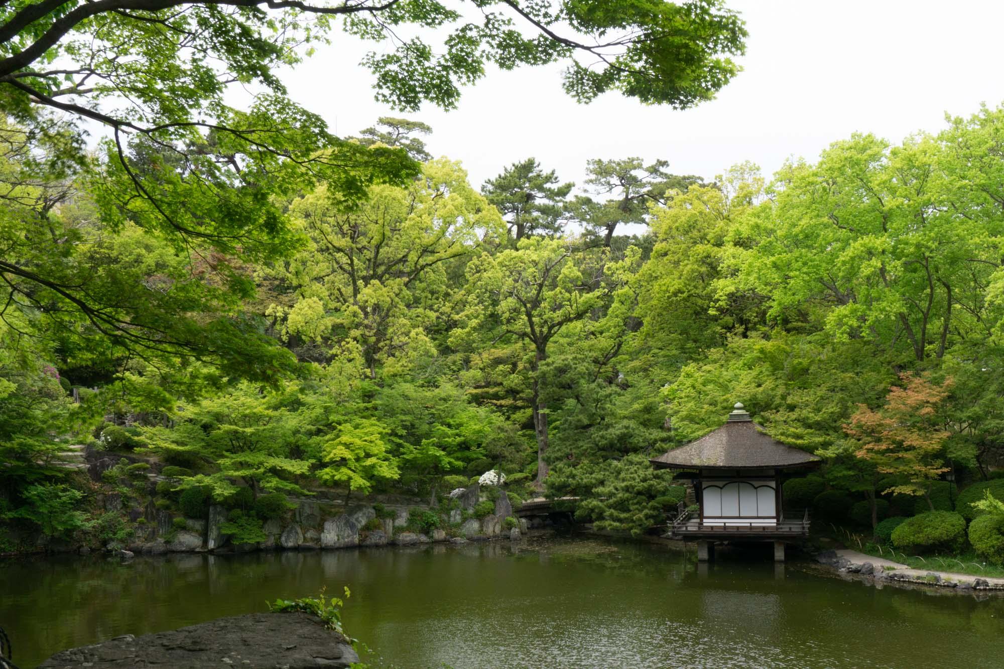 japan-residency-106