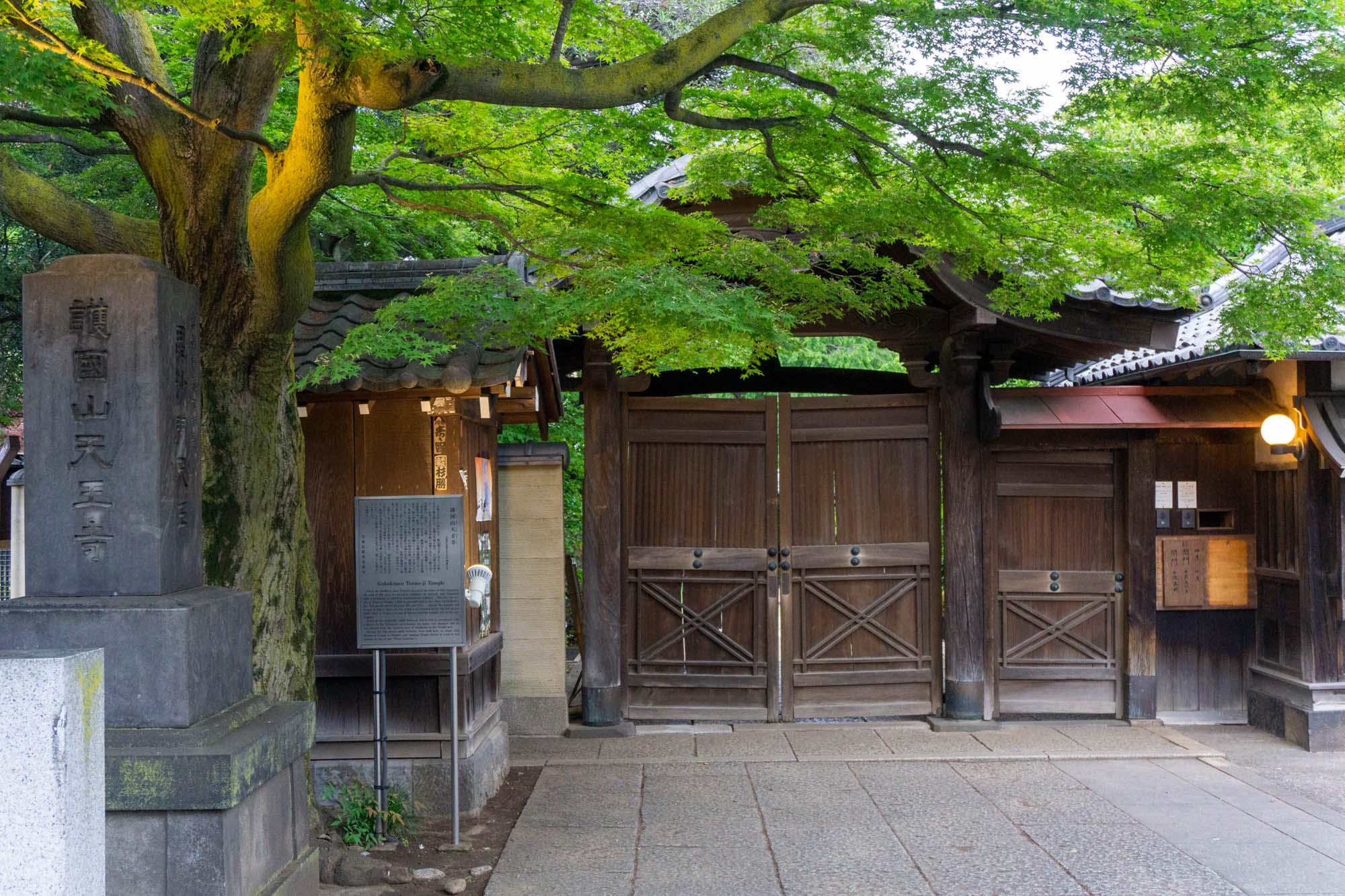 japan-residency-57