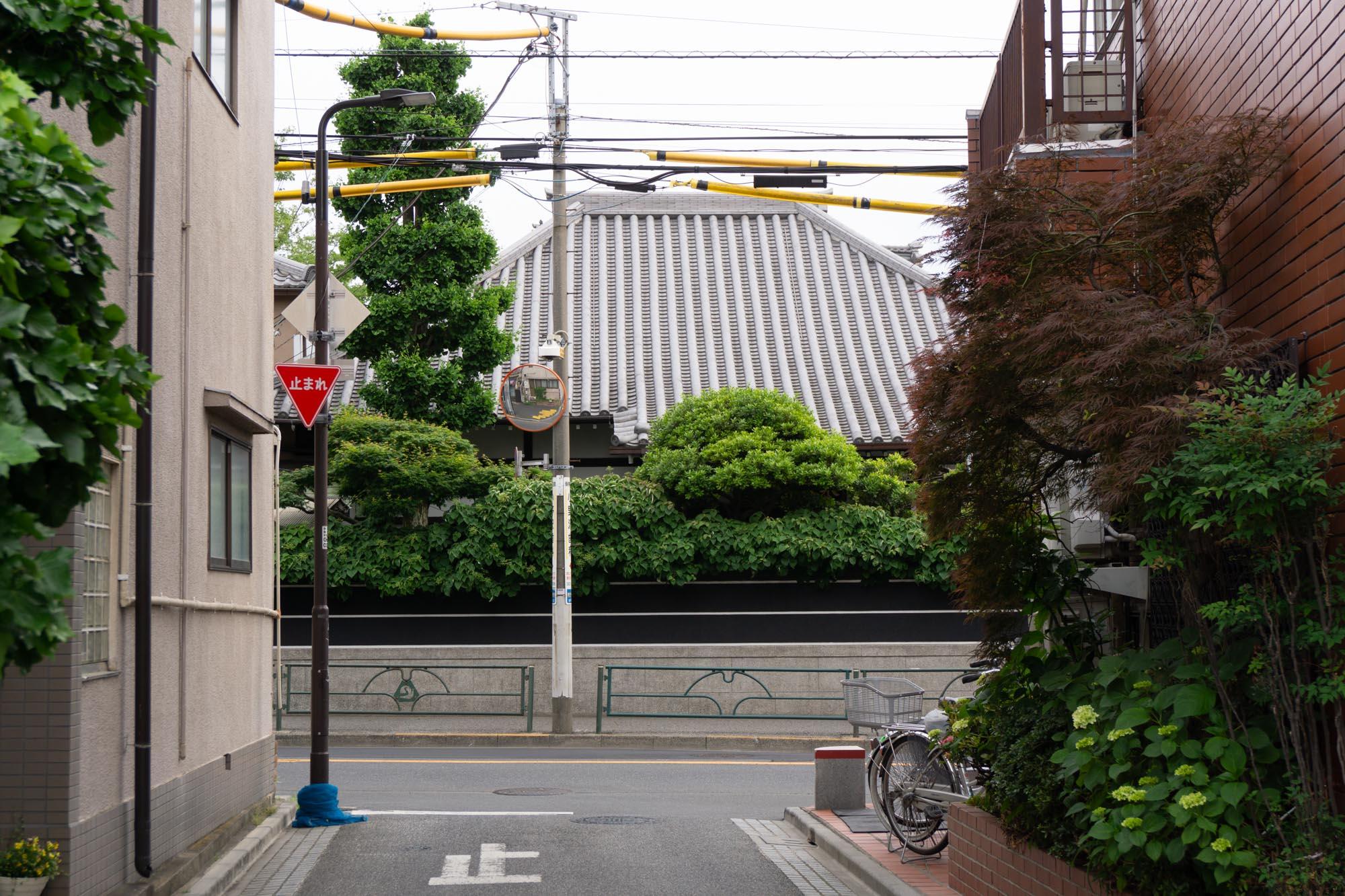 japan-residency-81